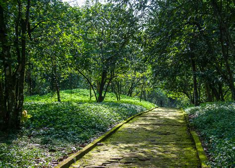 Aburi Botanical Garden Aburi Botanical Gardens
