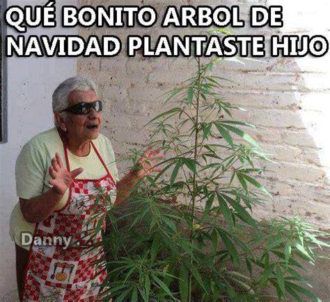 imagenes muy graciosas de navidad el erazno memes d 237 a de la marihuana hoy 20 de abril