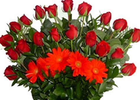 imagenes con movimiento de rosas rojas imagenes de rosas rojas hermosas con movimiento imagen