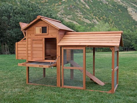 backyard chicken coop kit chicken coop diy kits 100 great backyard duck breeds the