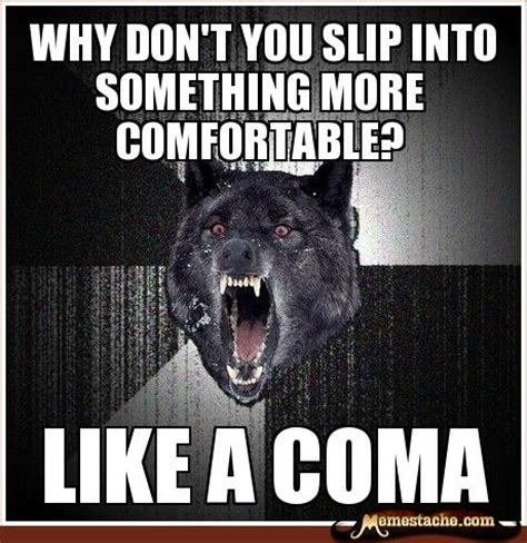 Meme Wolf - 11 best funny images on pinterest ha ha funny stuff and