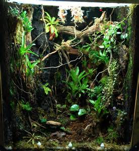 terrarium or vivarium owners manhattan reefs