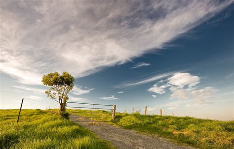 wallpaper for desktop background free download wallpaper wallpaper free download for desktop
