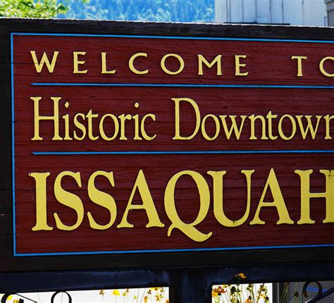 Issaquah Plumbing by Service Areas Ally Plumbing Bellevue Wa Plumbing Company