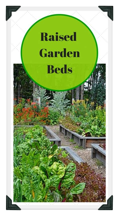 raised vegetable garden plans and ideas