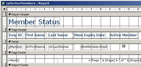 how to format reports with the layout view in ms access conditional formatting reports database solutions for
