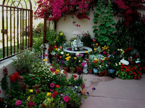 Patio Gardening 101 A Beginner S Guide To Patio Gardens Flowers For Balcony Garden