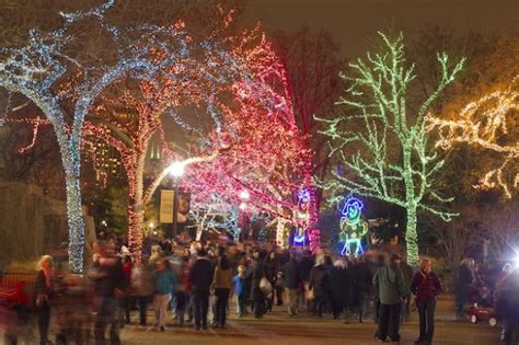 Let It Glow Best Holiday Lights From Coast To Coast Lincoln Park Zoo Light Show