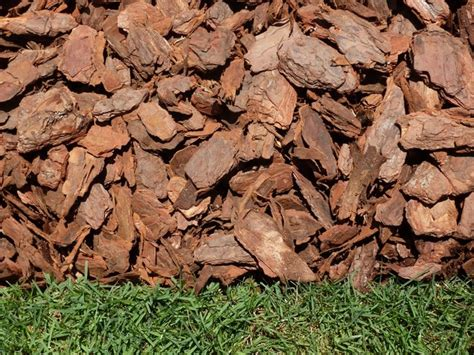 rustic mini pine bark nuggets landscape orlando by major mulch installations