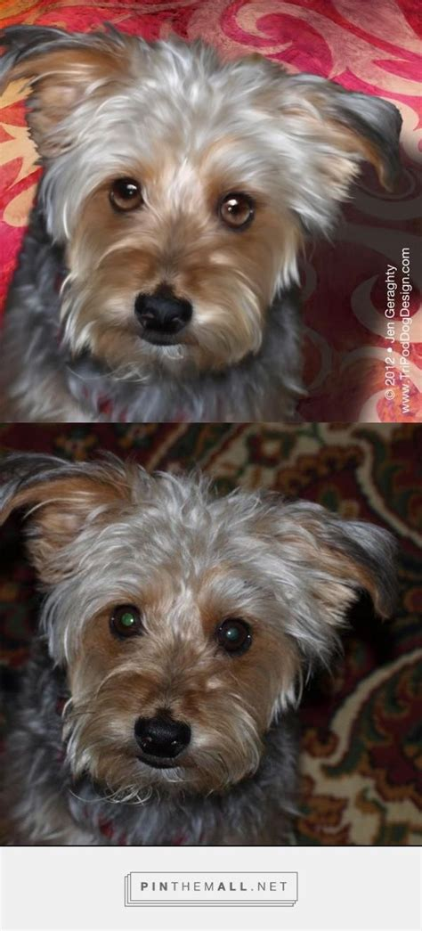 yorkie gift 49 best images about yorkie and gifts on yorkies terrier