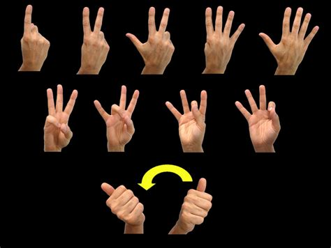 in sign language a library of useful urls by dewey 400 language research guide