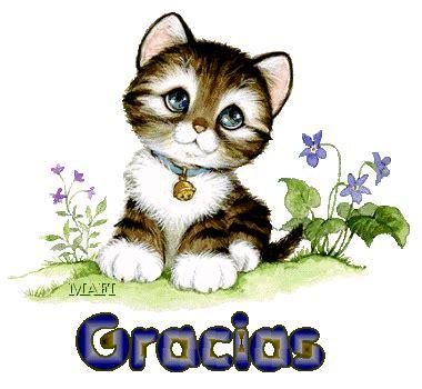 imagenes gracias igualmente lindo gatito te da las gracias imagenes y carteles