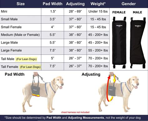 Web Slinging Spi Dogs by Gingerlead Sling Support Rehabilitation Harness