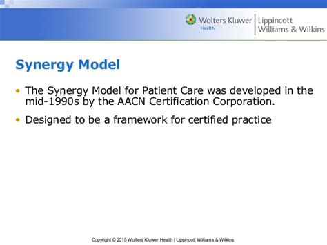 synergy model nursing theory chapter 11