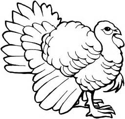 drawings of turkeys turkey drawing pictures cliparts co
