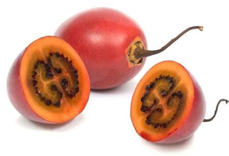 gemüse pflanzen wann pixwords das bild mit rot frucht essen gem 195 188 se in