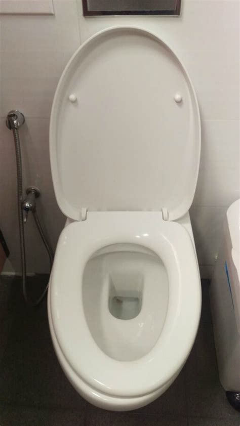 toilet repair singapore fixing all types of toilet problem
