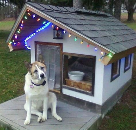 dog houses with ac dog house pampered pets pinterest