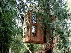 the new trend in luxury hotels is treehouses business