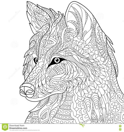 mr wolf coloring page zentangle stylized wolf stock vector illustration of