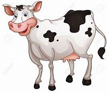 Image result for free pics of milk cows