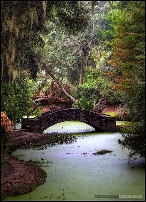 19 most beautiful places to visit in louisiana the