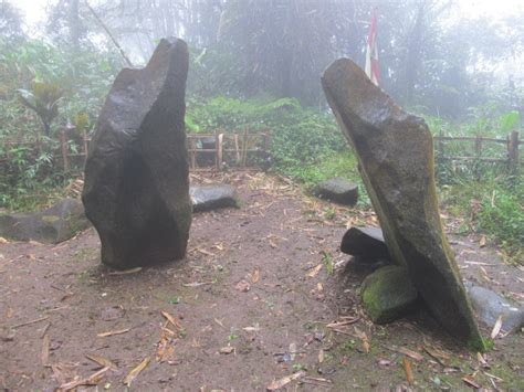 Harga Sepasang Fosil Kayu alam mengembang jadi guru sepasang batu naga gunung tilu