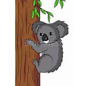 Koala &183 Cartoon Vector Zwarte Dier Australi&235