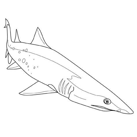 Coloriage Requin Scie Dessin Colorier Requin Scie A Imprimer L