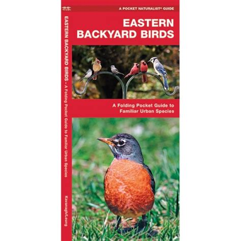 Backyard Birds Of America by Backyard Birds Of America Poster American