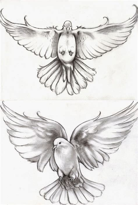 114 Best Dove Images On Pinterest Tattoo Designs Tattoo Dove Designs