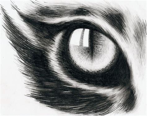 cat eye drawing eye of a cat by hitforsa on deviantart