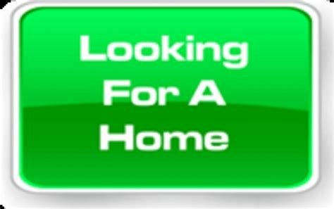i want to buy a house and rent it out i want to rent a house 28 images want to rent to buy we ll find your home homes