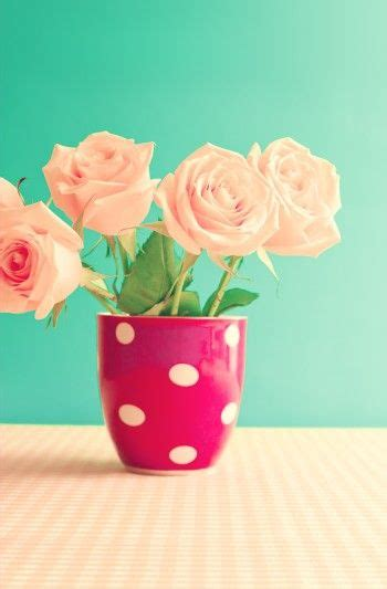 wallpaper flower tosca 34 best images about vectores on pinterest iphone