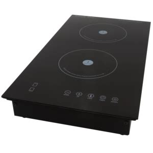 induction cooktop plate induction stoves induction plates cookware snappy chef