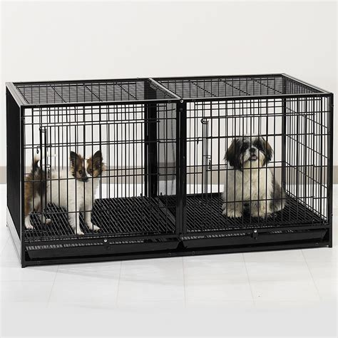 crate small breed puppies crates for small dogs trendy crates for small dogs with crates for small dogs