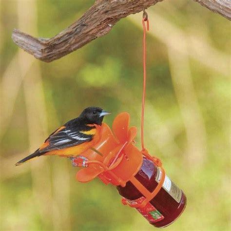 jelly jam feeder for orioles gardening pinterest