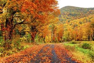 fall colors in fall foliage in america columbia