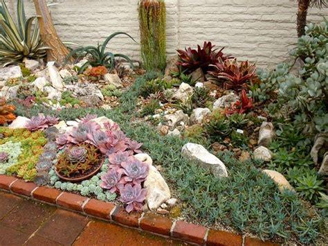 piante e giardini giardini piante grasse piante grasse piante grasse da