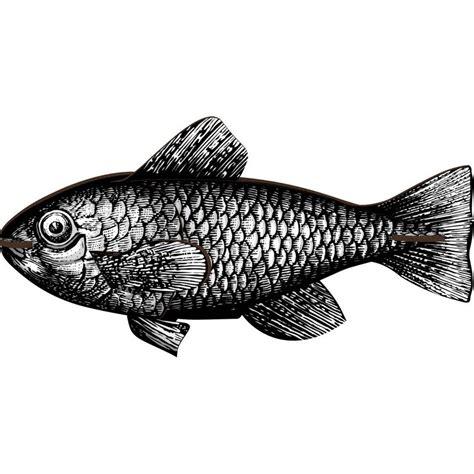 Decoration Murale Noir Et Blanc decoration murale poisson noir et blanc miho casablanca
