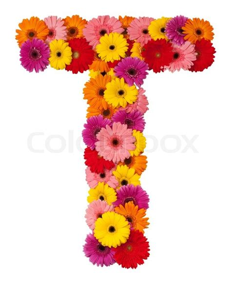 Flower Bloom by Letter T Flower Alphabet Isolated On White Background