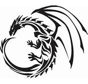 Dragon Tattoos PNG Transparent Images  All