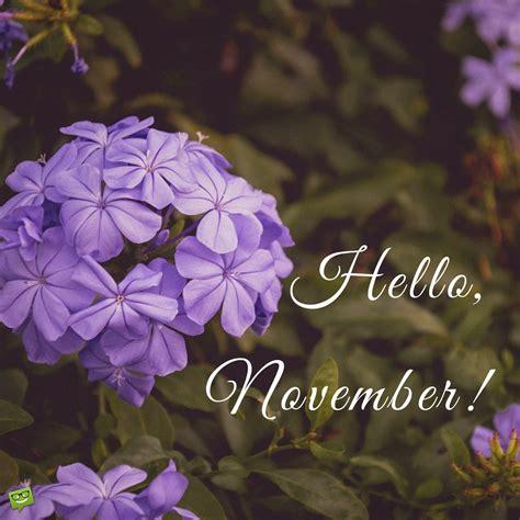 november quotes   month  gratitude