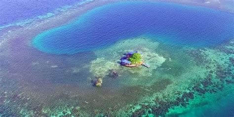 belize air bnb bird island rental on airbnb rent a private island in belize