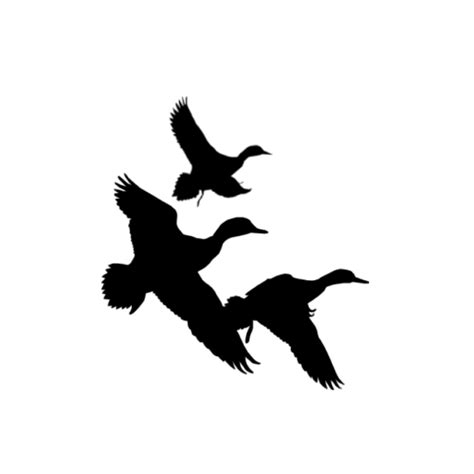 flying duck clipart black and white clipart panda free