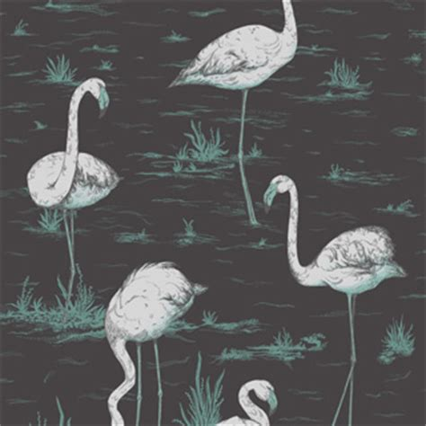 flamingo wallpaper cole and son flamingos 95 8048 contemporary restyled cole son
