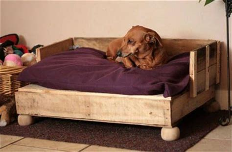 diy dog couch diy pallet dog bed furniture pallets designs