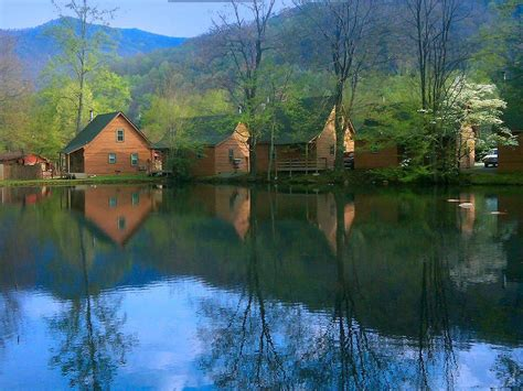 Cabins In Maggie Valley Nc by Creekwood Resort Updated 2017 Hotel Reviews
