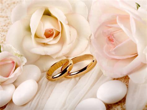 white roses and wedding rings wallpaper hd desktop wallpaper