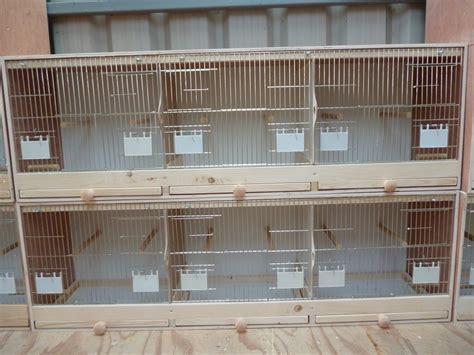 house finch breeding finch breeding cages gouldian green